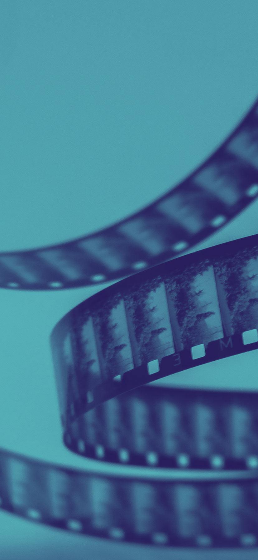 Die Agentur Reingold ist die versierte Werbeagentur für anspruchsvolle Filmproduktionen.